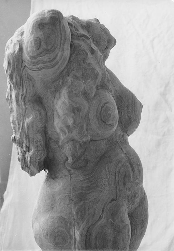 Rudolf Schwaiger: Dame mit Floh 1975